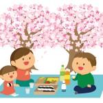 千葉県で家族でゆっくり花見!東金桜祭り!泉自然公園!