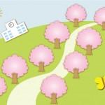 千葉でぶらりと歩く桜並木は?常盤平さくら通り!海老川!千葉大学!