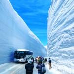 立山の雪の大谷って冬も見れるの?時期はいつ?