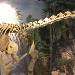 2015夏休み!幕張にメガ恐竜展見に行こう!見所!料金?前売り?