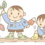 千葉で収穫体験がしたい!キャンプも花火も楽しめる!東京ドイツ村