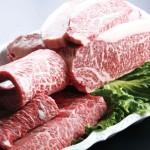 肉フェスが新潟で2015に開催!駐車場は?周辺の観光は?