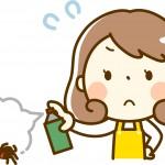 家の中の蜘蛛の手を汚さない退治方法です!スプレーも使いませんよ