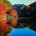 千葉の紅葉白岩のおすすめの楽しみ方と亀山湖の紅葉
