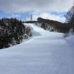 新潟の土日に空いてるスキー場の紹介します!ファミリーもパウダー派も