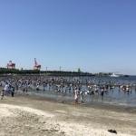 千葉の潮干狩り2017がついに開幕!おすすめの潮干狩り場はどこ?