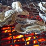 地元が教えちゃう!広島の牡蠣デートのおすすめコース