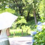 紫外線対策の日傘はいつから差すの?選び方やおすすめはどれ?